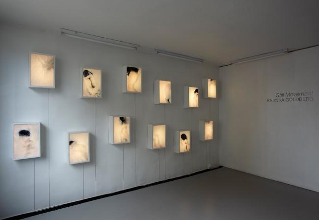 Katinka Goldberg - Still Movement