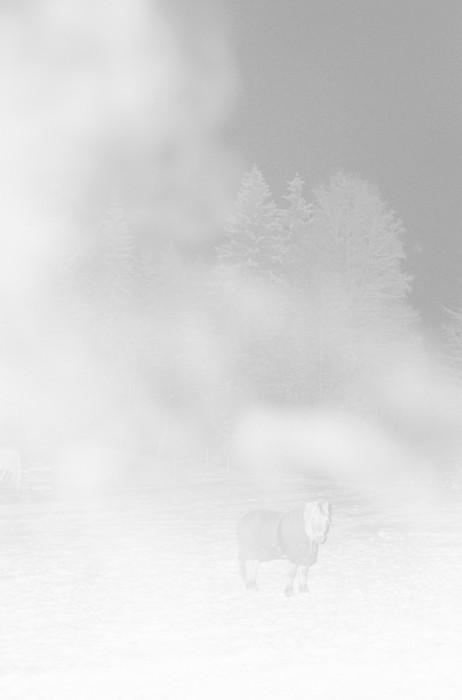 Ola Rindal - Night Visions