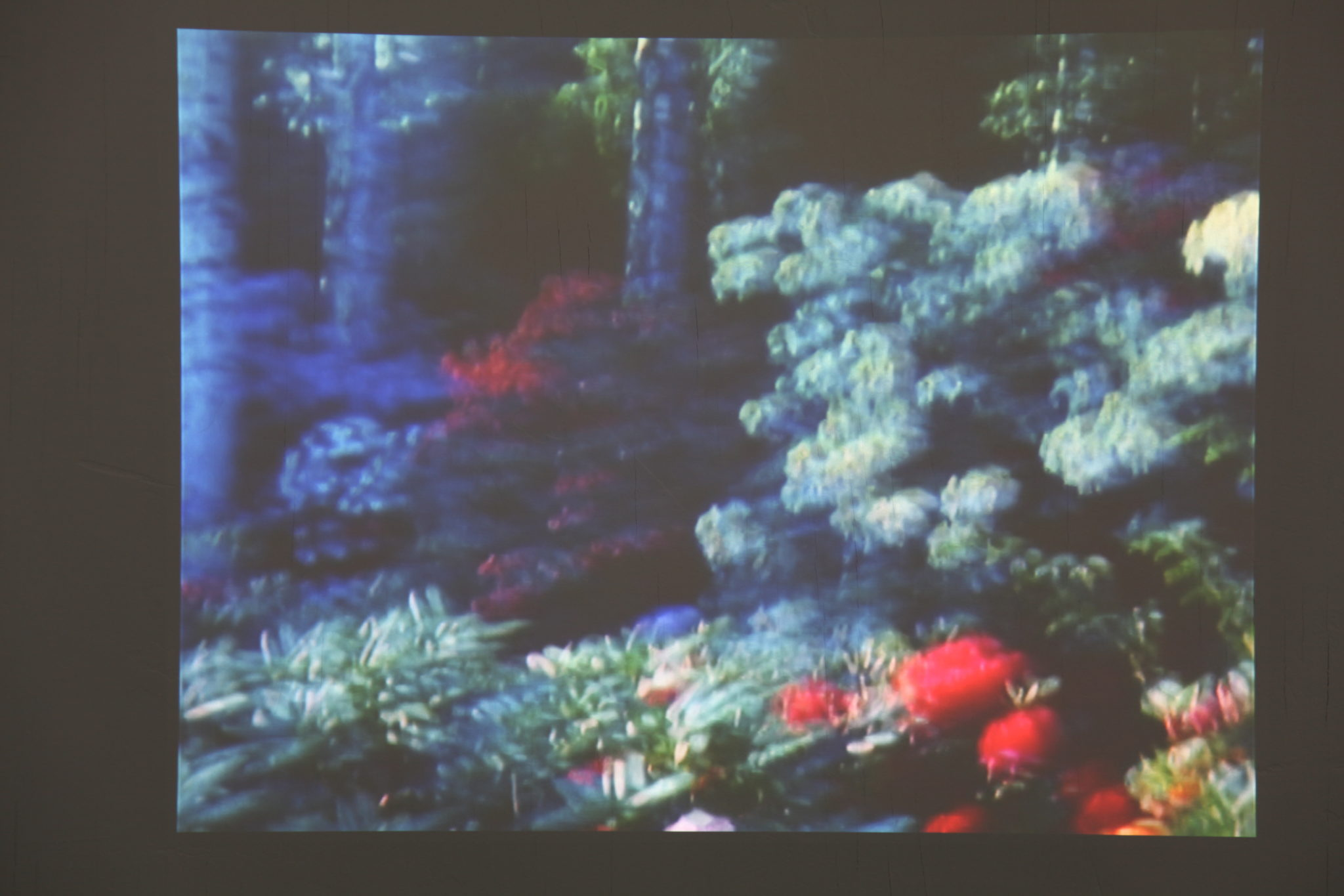 The Other Side, Super 8 film, digitalized