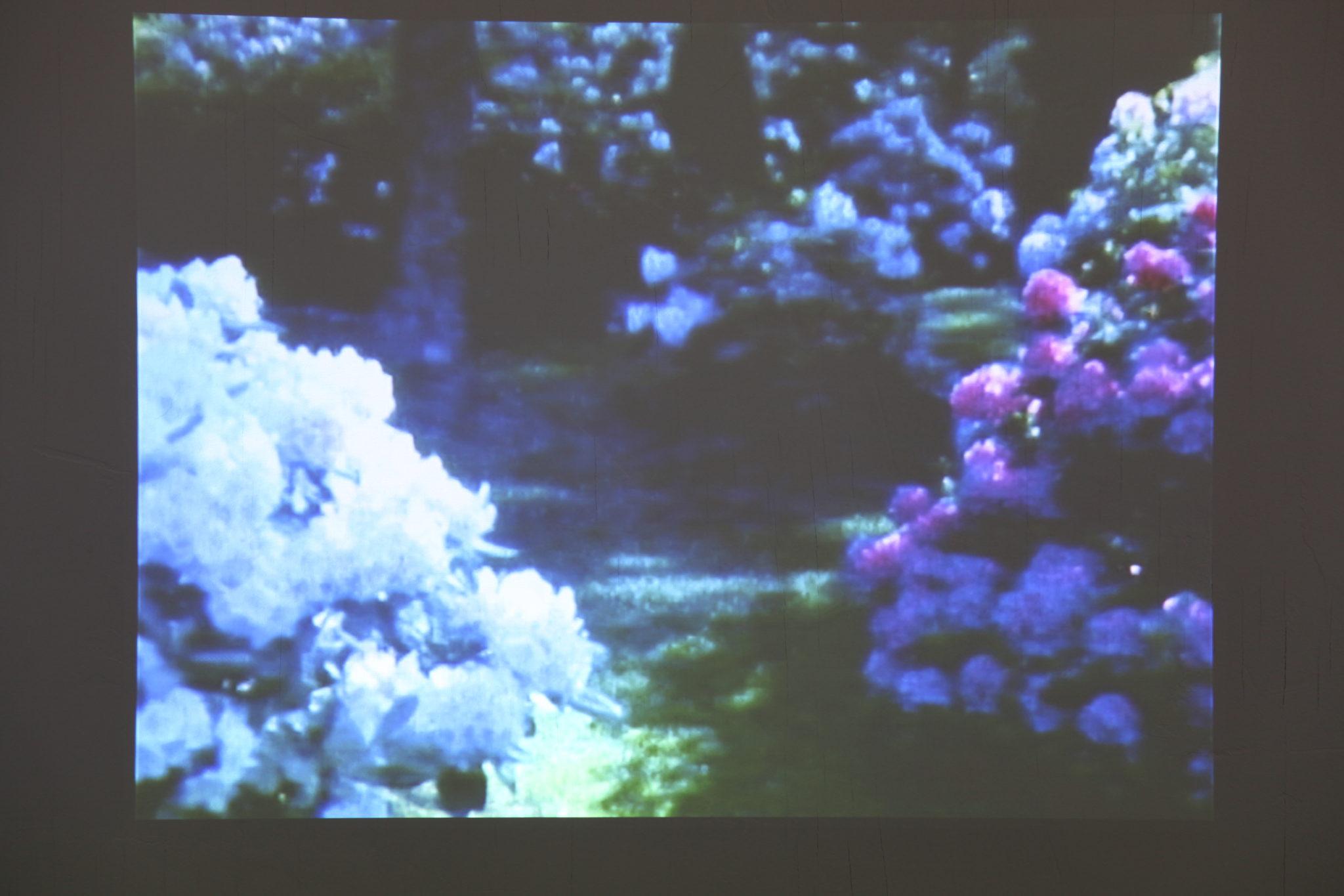 The Other Side, Super 8 film, digitalized
