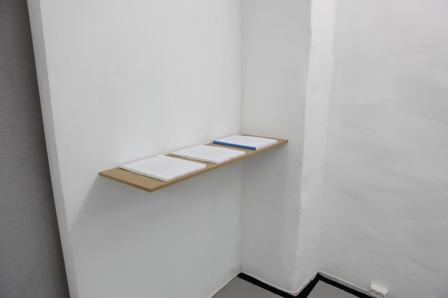 Installation view at MELK january 2011
