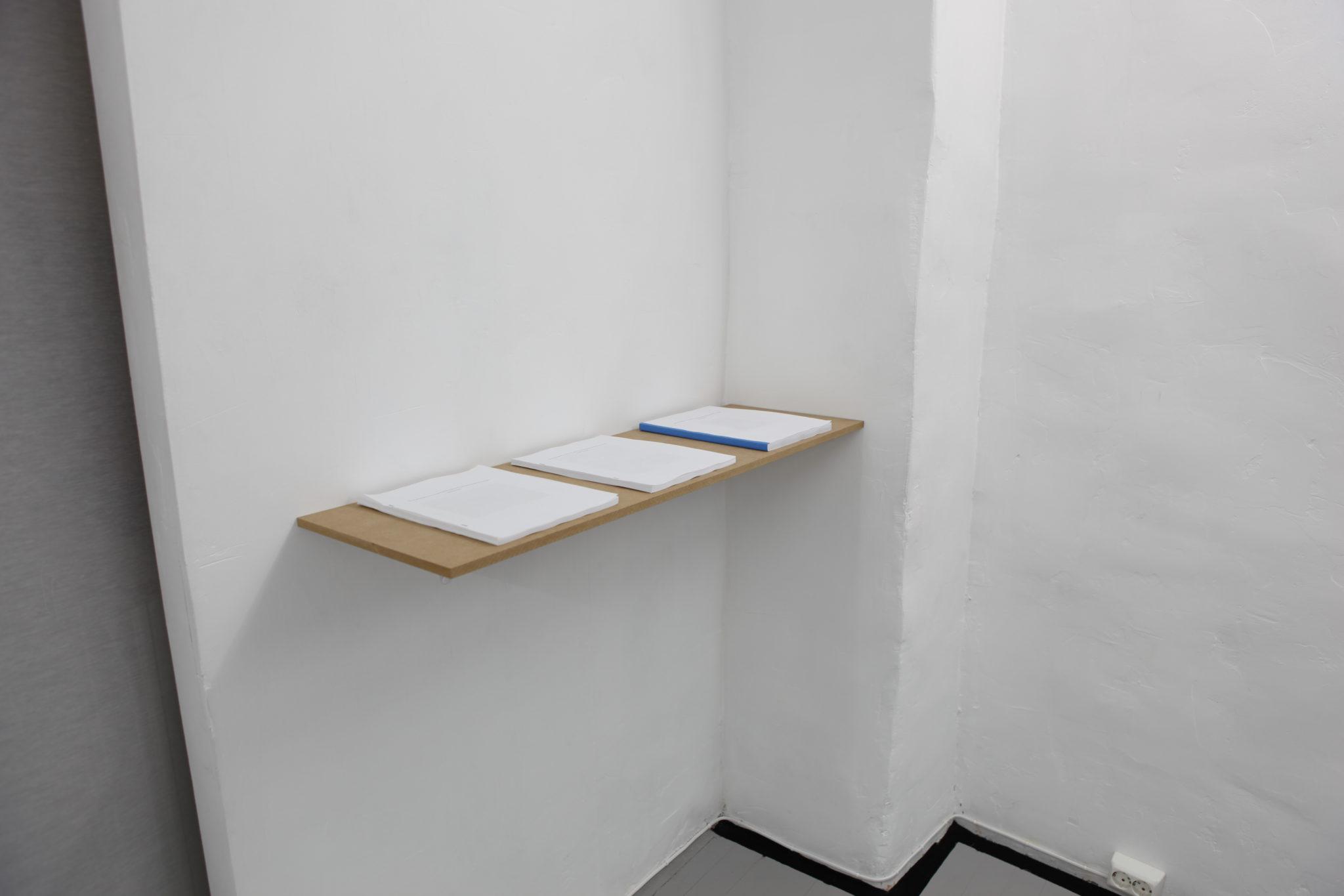 Installation view David Schoerner installation view at MELKat MELK january 2011