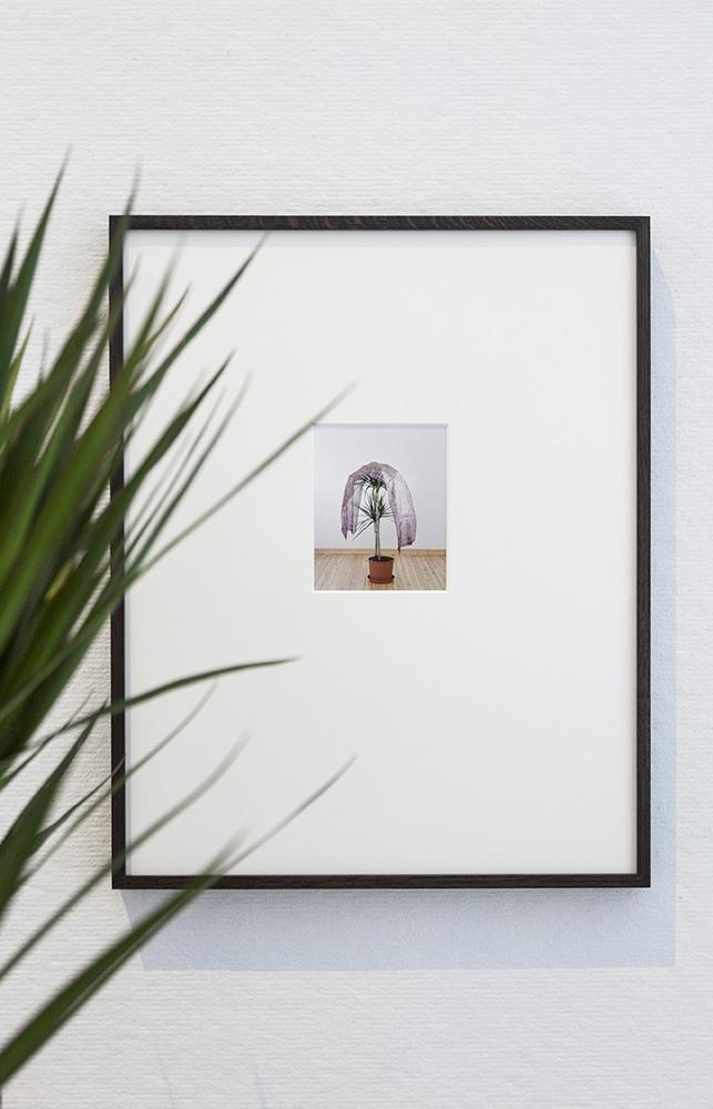Marthe Elise Stramrud - Livingroom Poetics
