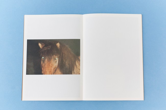 Ola Rindal - Invisible (pictures for an untold story)