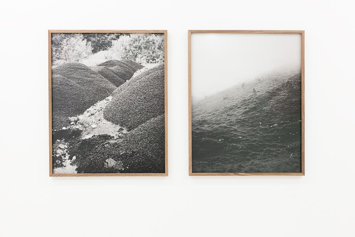 Linn Pedersen - Sedimentality - MELK