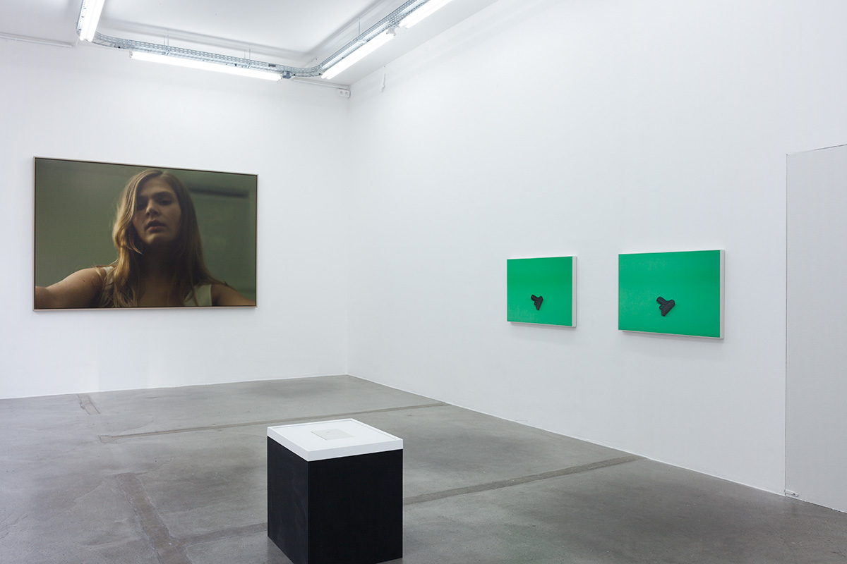 Morten Andenæs - green apples / blue sky - Paris November 2014