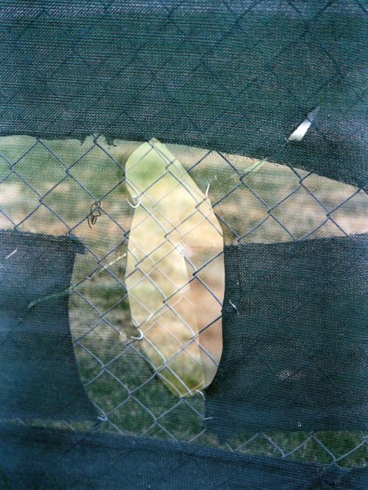 Nicholas Gottlund - Double Fence, 2014, C-print, 20x15 cm image, 30x25 cm sheet, edition of 5