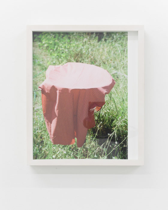 Nicholas Gottlund - Tomato Fabric - 2015 - C-print 30,5x22,2 cm image 30,5x25,5 cm sheet