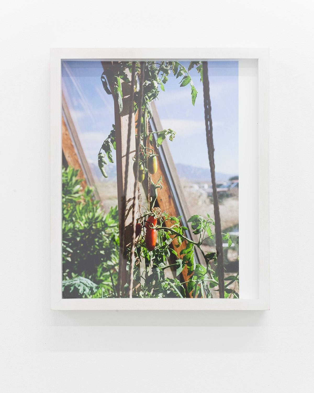 Nicholas Gottlund - Earthship - 2014 - C-print 30,5x22,2 cm image 30,5x25,5 cm sheet