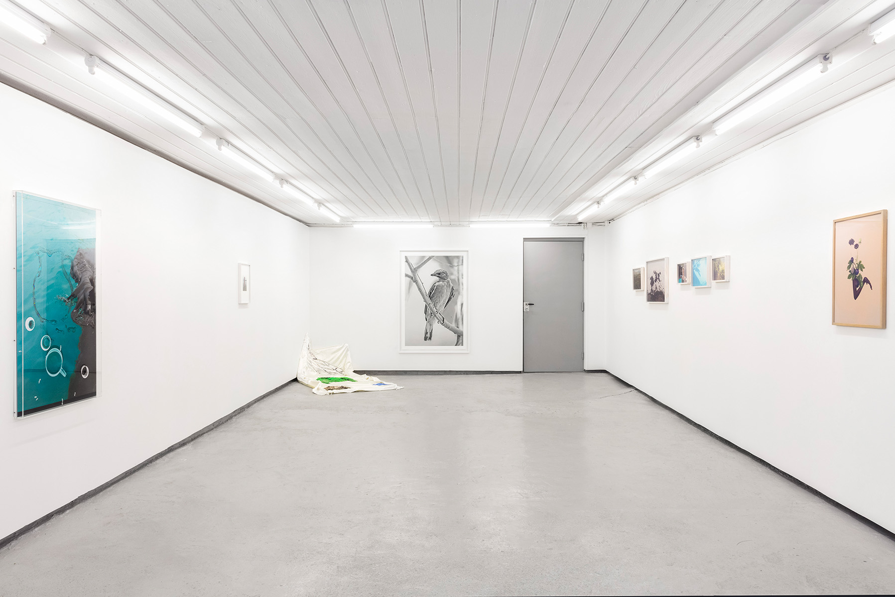 National Juried Spring Exhibition at MELK 2017 installation view