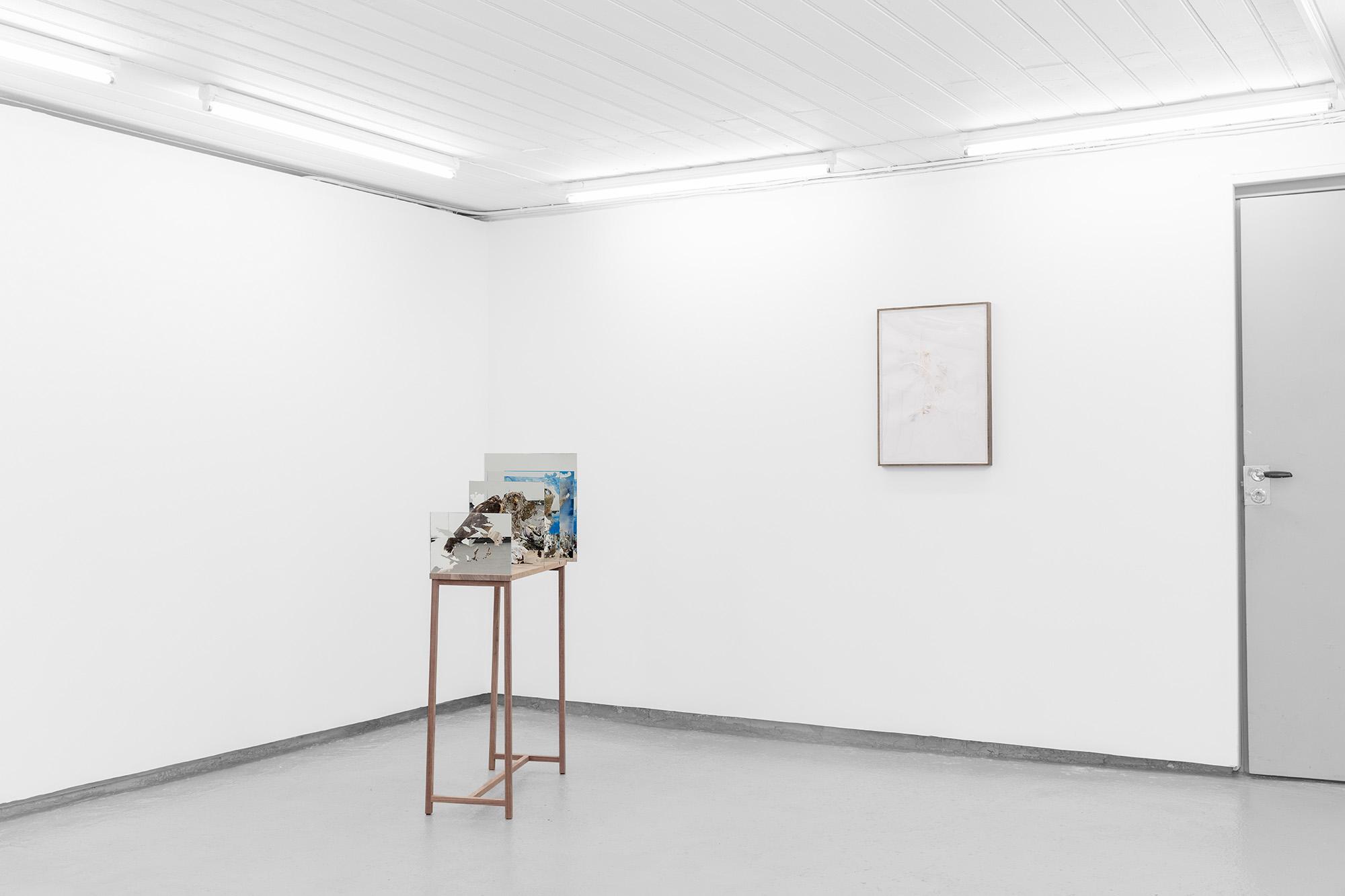 Randi Nygård / TOKONOMA at MELK 2019
