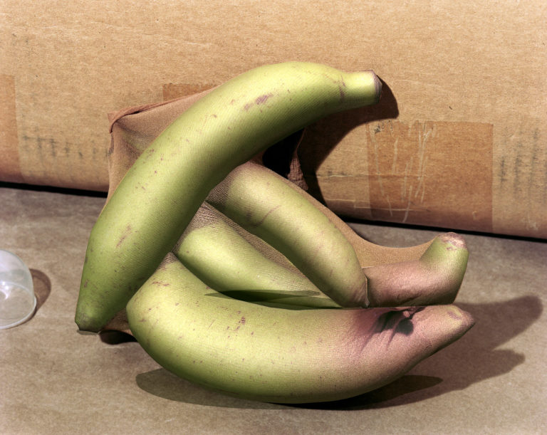 Lucas Blalock, Bananas, 2018, Archival pigment print, 43 × 53.5 × 6.5 cm Courtesy of the Artist and Galerie Eva Presenhuber, Zürich and New York