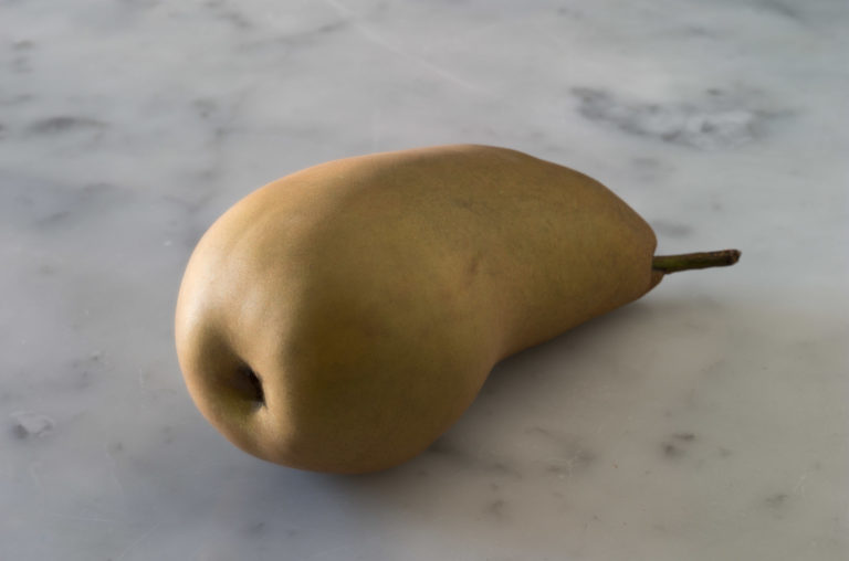 Morten Andenæs, The shape of a pear, 2019, Archival pigment print, 90 × 140 cm Courtesy of the Artist and Galleri Riis, Oslo